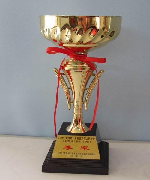 2010年青秀杯商运会获羽毛球比赛女子单打甲组季军